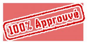 La Notice de Sécurité dans REGLEMENTATION 100-approuve-300x152